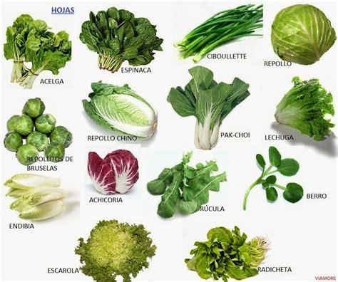 imagenes de hojas verdes solas frutas verduras y hortalizas
