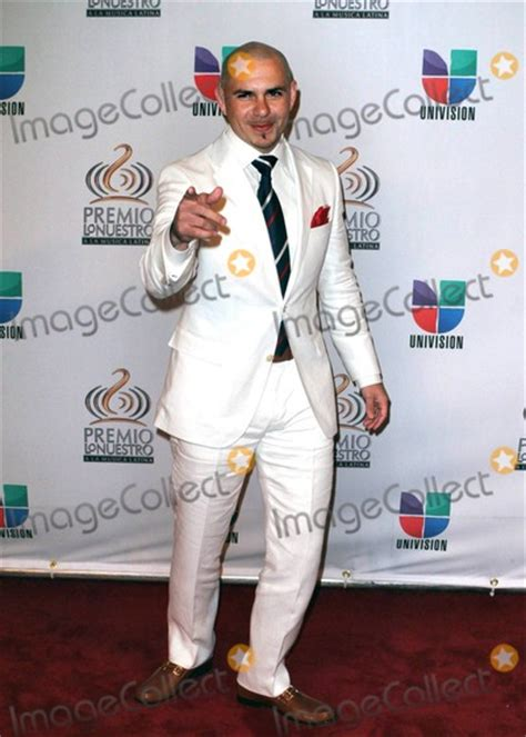 biography of pitbull in spanish pitbull pictures and photos