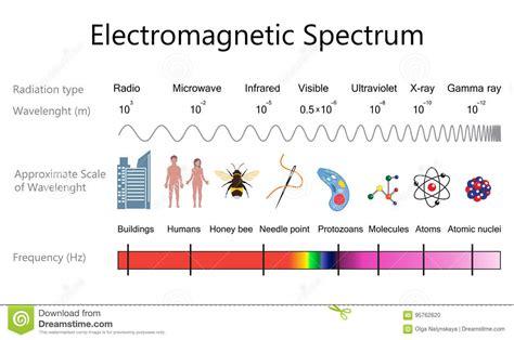Electromagnetic L by Electromagnetic Spectrum Diagram Stock Vector Image
