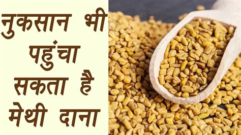 Its All Fenugreek To Me Theitlistscom by Fenugreek Seeds म थ द न And Its Side Effect Of न कस न