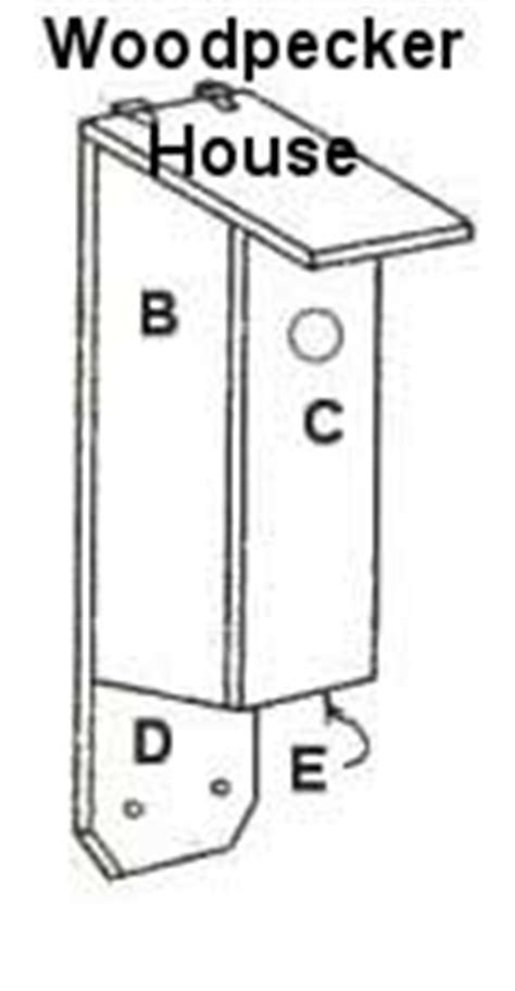 Woodpecker House Plans Downy Woodpecker Bird House Plans Quotes
