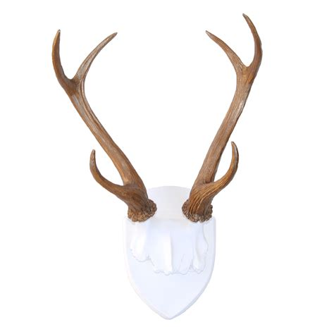 Home Decor Skulls by Faux Deer Antler Wall Trophy White And Bronze