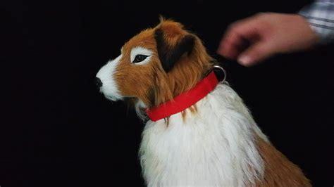 cheap puppy supplies china factory cheap blinking pet collar for