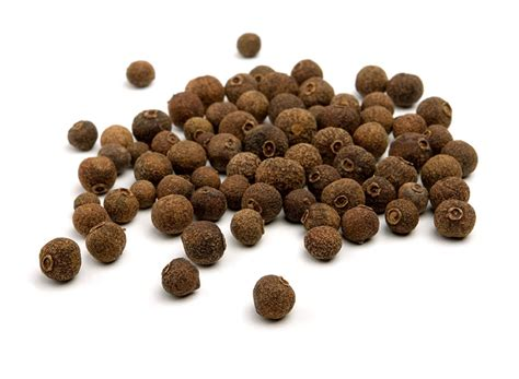 allspice berry essential oils pedia