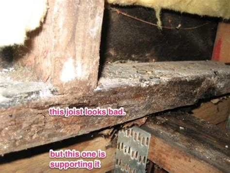 Water Damaged Floor Joists by Joists Water Damage In Shower Stall Doityourself