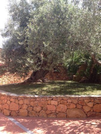 i giardini di cala ginepro recensioni piscina e spiaggia foto di i giardini di cala ginepro