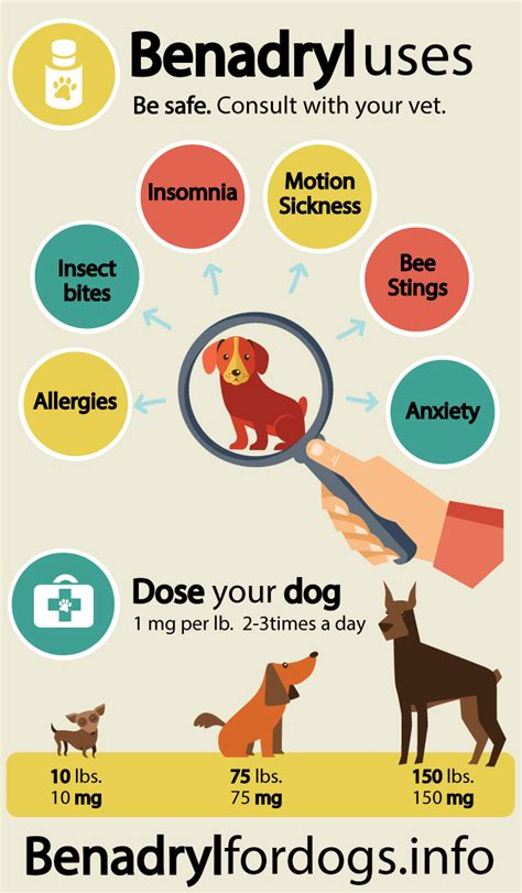 antihistamine for dogs benadryl for dogs benadryl dosage for dogs can i give my benadryl