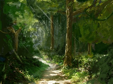 imagenes de bosques verdes modulo de redaccion bosques del mundo maravillosos