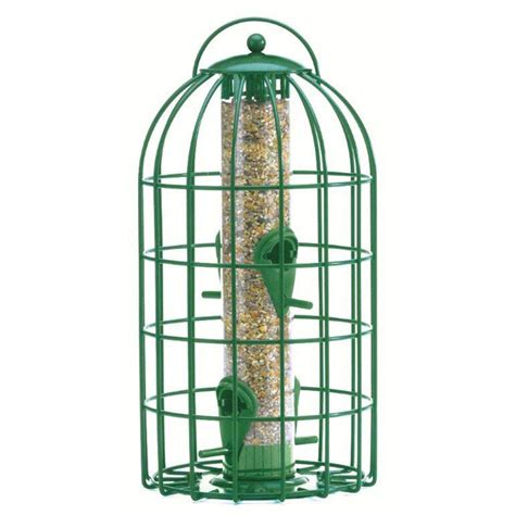 Nuttery Bird Feeders buy the nuttery squirrel predator proof bird seed feeder