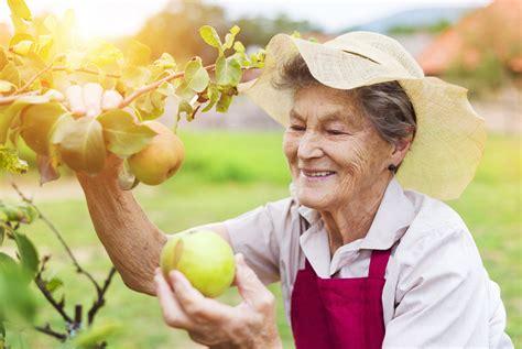 senior woman  garden senior abuse law
