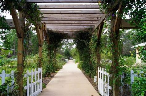Psl Botanical Gardens Trellis Picture Of Port St Botanical Gardens Port Tripadvisor