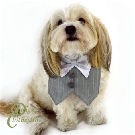 puppy tuxedo best 25 silver bow tie ideas on cheap silver rings bow rings and pretty