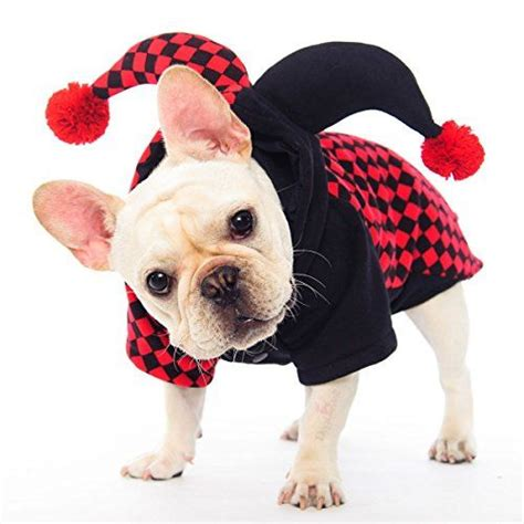 clown costume for dogs 17 best images about potpiegirl s pin pins on outhouse bathroom