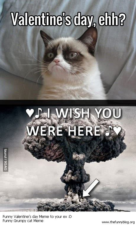 valentines grumpy cat a thermo nuclear s day i am grumpy cat
