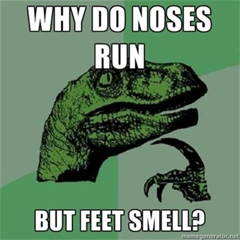 One Line Memes - why do noses run but feet smell funny one liners dump