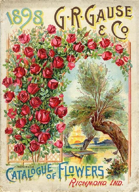 1898 flower catalog seed packets catalogs trade cards