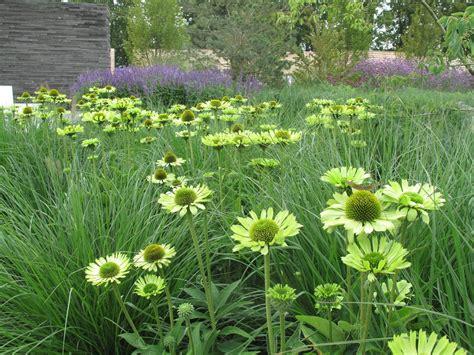 naturnaher garten pflanzen a history of gardens a gardener in