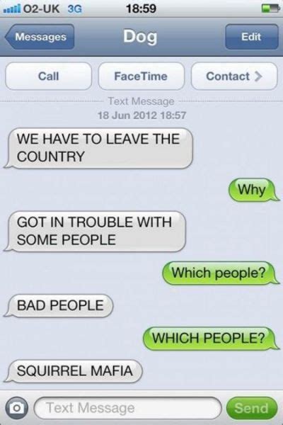 if dogs could text if dogs could text you d conversations like this 11 pics izismile