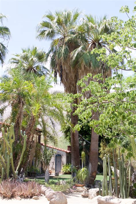 Moorten Botanical Garden Palm Springs Ca Moorten Botanical Garden Palm Springs Ca Moorten