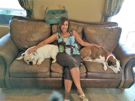 sitting near me s home sweet home pet sitting coupons near me in peoria 8coupons