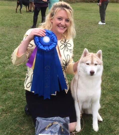 rottweiler club of alaska working club of alaska monday september 5 2016 canine chronicle