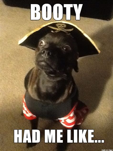 Pirate Booty Meme - booty meme www pixshark com images galleries with a bite