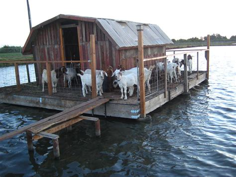 the goat house building a quot floating quot goat house little house on the fish farm near kings canyon