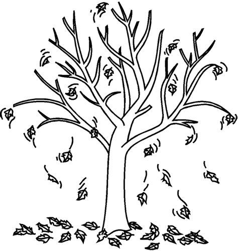 autumn fall tree coloring page tree pinterest fall