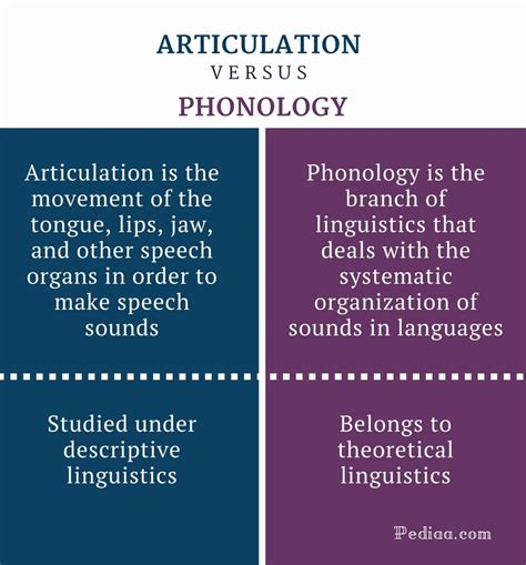 what does phonology mean difference between articulation and phonology definition