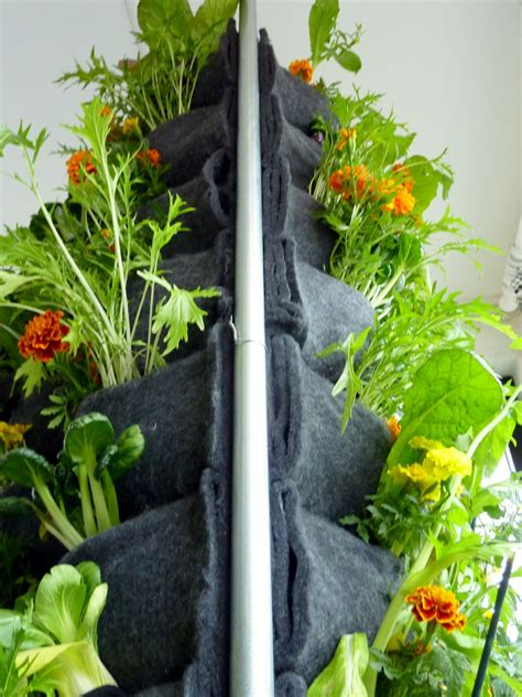 Aquaponic Vertical Vegetable Garden Florafelt Vertical Vertical Vegetable Gardening Systems