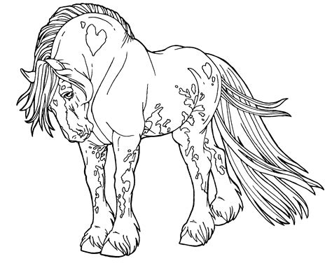 free lines gypsy drum horse by applehunter on deviantart