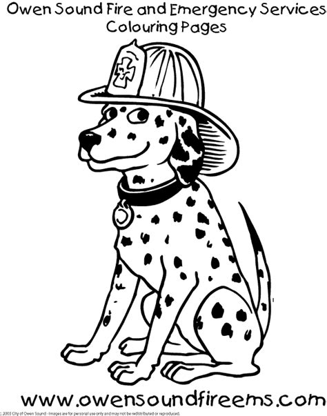 dalmatian coloring page coloring home dalmatian fire dog coloring pages coloring home