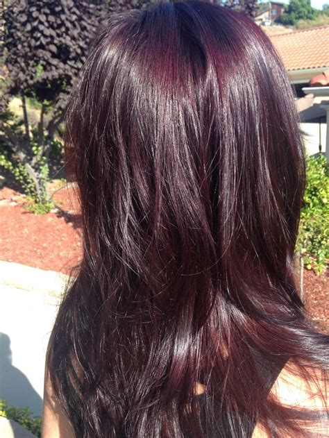 custom merlot hair color   client redken