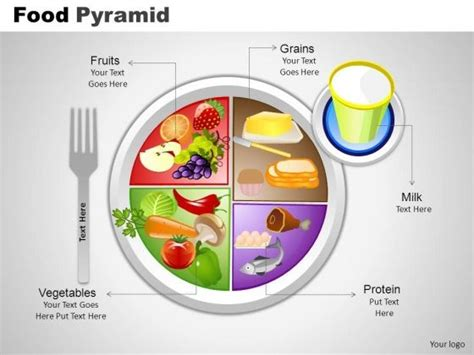 diagram of the food pyramid food groups diagram food free engine image for user