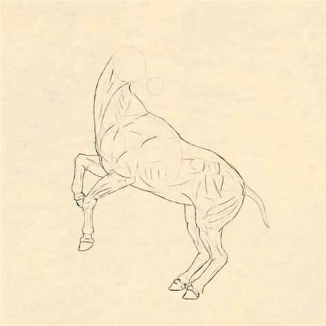 http www jesusninoc com 2014 10 11 drawing two houses anatom 237 a art 237 stica anatom 237 a animal el caballo