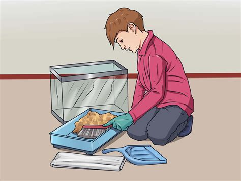 How To Clean Out Of A by How To Clean Out A Hamster Cage 12 Steps With Pictures