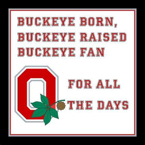 ohio state buckeye fan buckeye born ohio state football fan art 29208440 fanpop