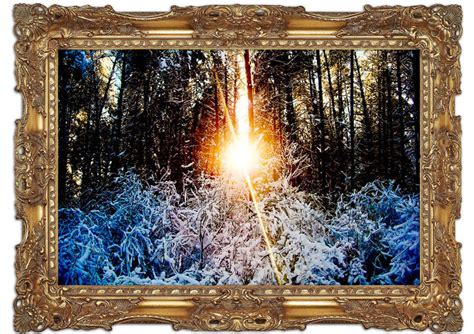 printed wall murals sunlight through trees winter landscape mural printed