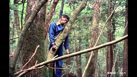 el bosque de los el bosque mas terror 237 fico del mundo videos on line