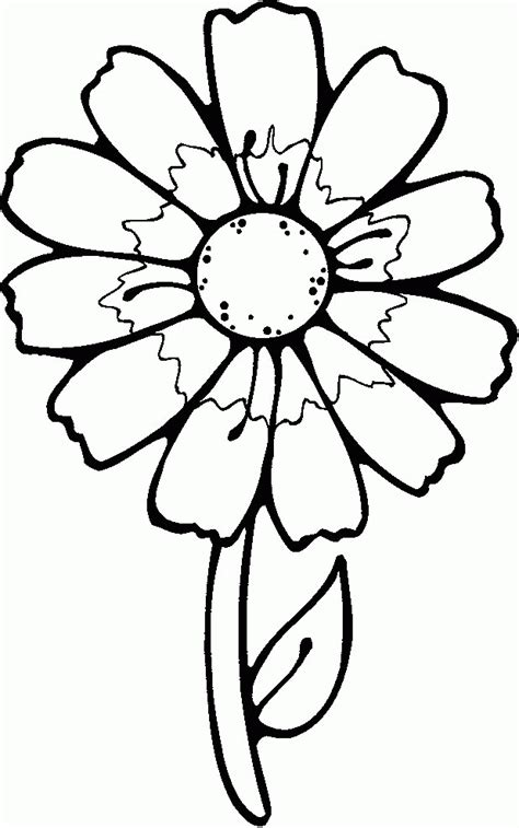 pictures of flowers to color flower templates for preschool coloring home