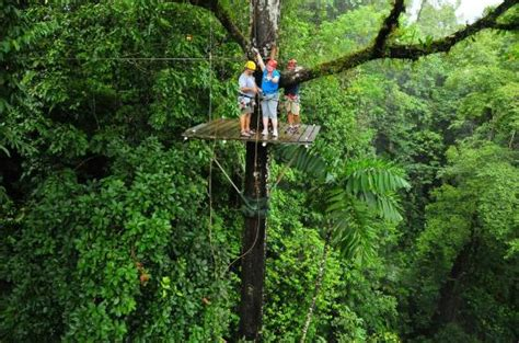 monteverde zip line tarzan swing top 3 zip lining destinations in costa rica peru for less