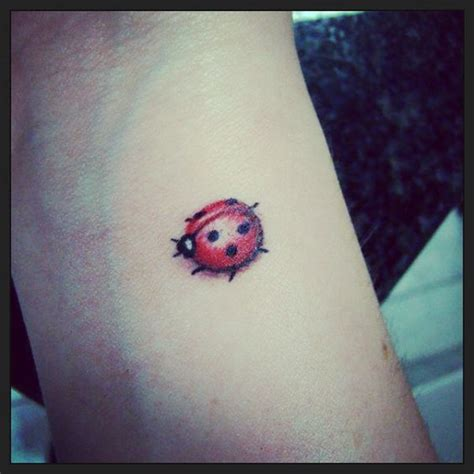 lady beetle tattoo designs the world s catalog of ideas