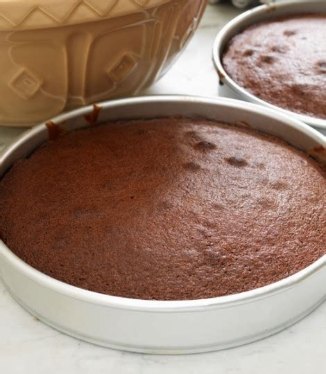 simple chocolate cake delicious magazine