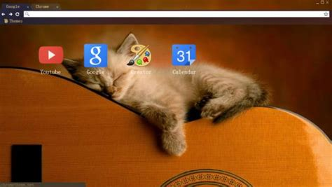guitar theme for google chrome 12 kitten chrome themes desktop wallpapers more for