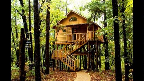 Livable Tree House Plans Livable Tree Houses For Sale For Adults Best House Design