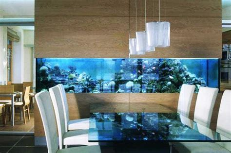 coolest wall fish tank designs