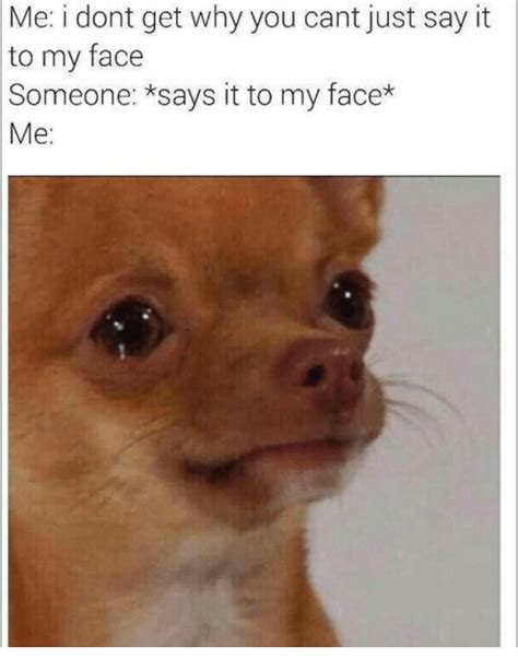 Say That To My Face Meme - me i dont get why you cant just say it to my face someone