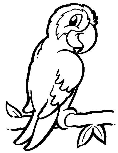 imagenes de animales de la selva para imprimir dibujos para colorear animales de la selva salvajes y