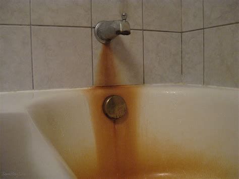 remove rust from bathtub rid the sink tub or toilet of rust stains trusper