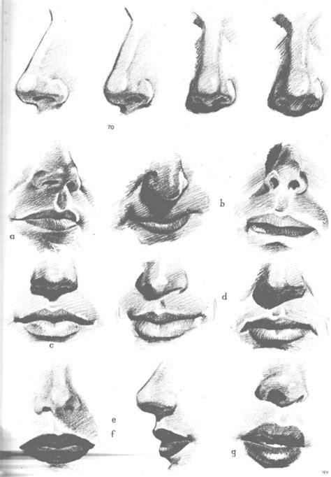 imagenes de narises a lapiz aprende a dibujar la cabeza humana retratos
